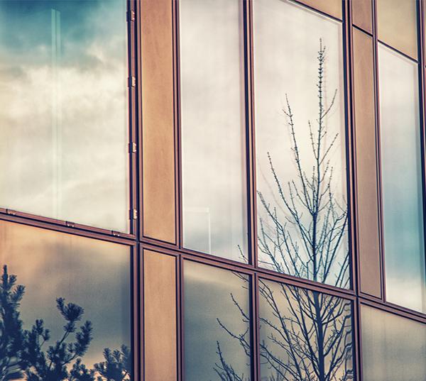 exterior window film austin