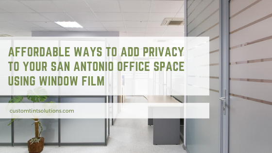 privacy window film san antonio offices